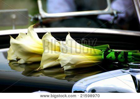 Calla Lilies On Posh Car Hood