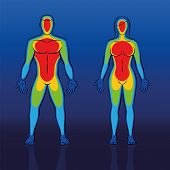 Body warmth thermogram of male and female body - infrared thermography of a couple with cooler blue areas at edge regions like hands and feet and the much warmer red torso. Schematic vector illustration. poster