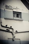 Pigeons sitting on pipelines near a train station. poster