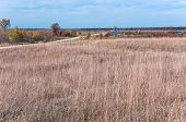 road through prairie and wetlands of necedah national wildlife refuge in central wisconsin poster