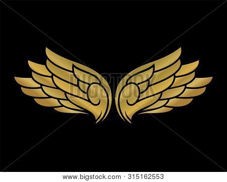 Golden  Vector Wings, Vector Wings Collection, Wing Logo Company, Icon Wing Flying, Eagle Wing Brand