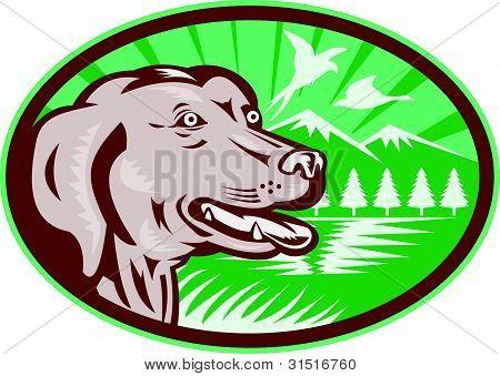 Labrador Retriever Hunting Dog Retro