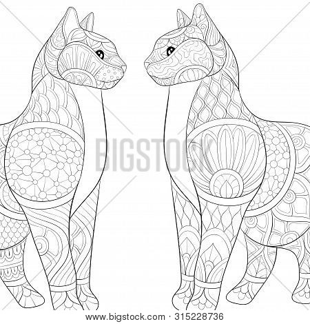 Two Lovely Cats With Ornaments Image For Relaxing Activity.adult Coloring Book,page For Print.zen Ar
