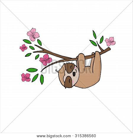 Hand Drawn Vector Illustration Of A Cute Funny Baby Sloth Hanging From The Branch.
