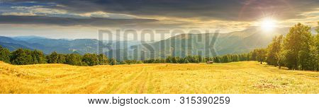 Panoramic Mountain Landscape At Sunset. Grassy Meadow On The Hillside In Evening Light. Trees On The