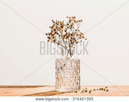 Bouquet Of Dried Baby's Breath Flowers In Glass Bottle