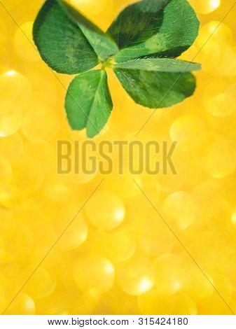 Fresh Green Lucky Four Leaf Clover