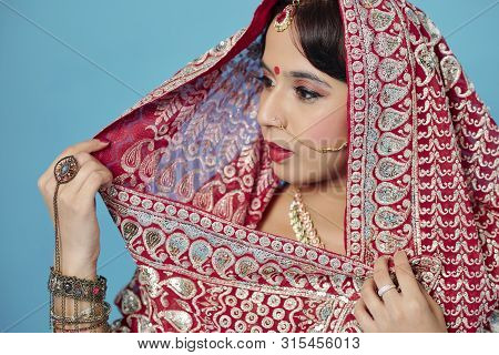 Young Indian Woman Wearing Traditional Sari Dress With Beautiful Embroidery And Set Of Jewelry For W