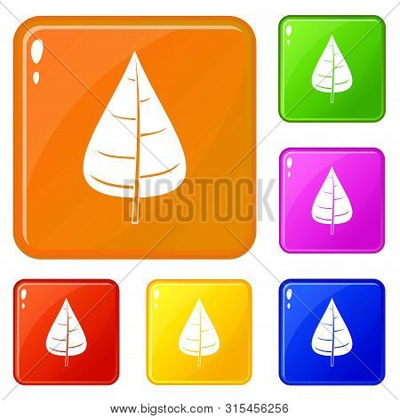Poplar Leaf Icons Set Collection Vector 6 Color Isolated On White Background