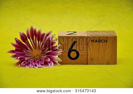 6 March On Wooden Blocks With A Pink And White Aster On A Yellow Background
