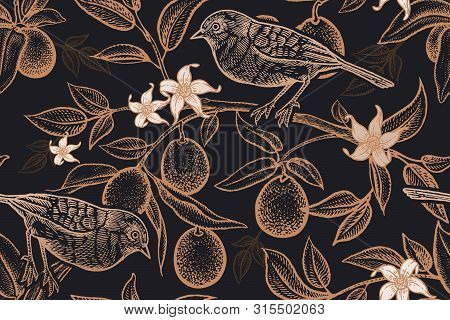 Bird On A Branch Of Citrus Tree. Seamless Vector Background With Fruits And Kumquat Flowers. Pattern