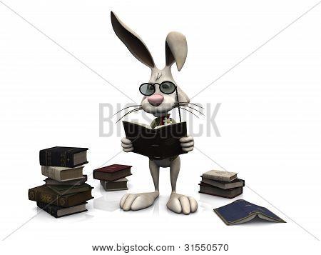 Cartoon Kaninchen ein Buch zu lesen.