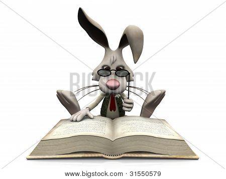 Libro grande de lectura de conejo de dibujos animados.