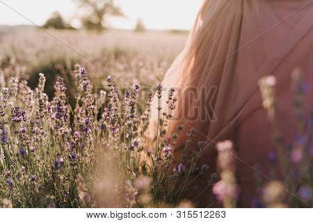Woman Walking In Lavender Herb Field On Sunny Day. Partial View Of Girl Wearing Romantic Dress In Ro