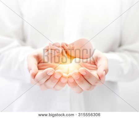 Human embryo in hands with light beam