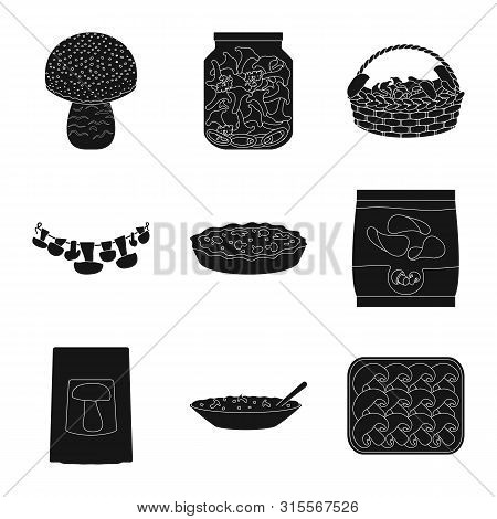 Isolated Object Of Variety And Ingredient Logo. Set Of Variety And Food Stock Symbol For Web.