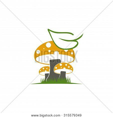 Black, Champignon, Collection, Cuisine, Design, Dinner, Drawing, Eco, Element, Food, Forest, Fresh,