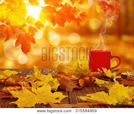 Autumn leaves and red cup of coffee on the sun blurred trees . Fall background.