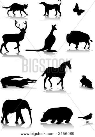 Animals1.Eps