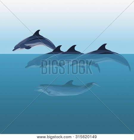 A Flock Of Dolphins Swimming In The Sea. Vector Illustration