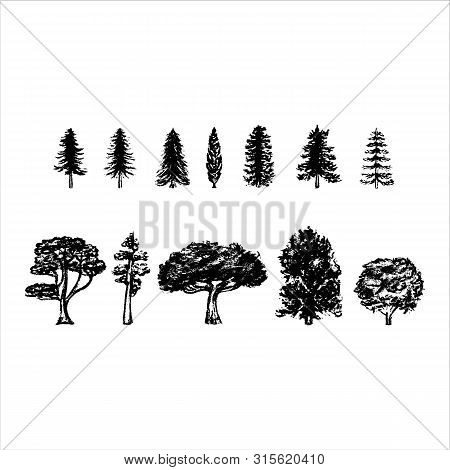 Vintage Tree Silhouettes On White Background. Vector Illustration.