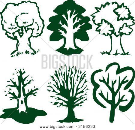 Trees Green