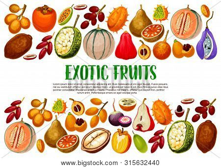 Exotic Fruits, Tropical Berries Branches Vector Banner With Border Of Vegetarian Food. Fig, Cantalou