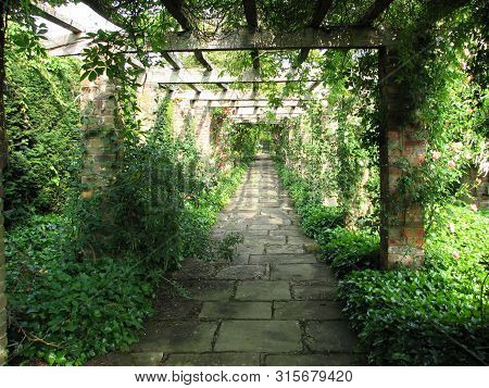 Beautiful Structure, Awning, Made Of Wooden Boards. Alley Of Wooden Boards For Climbing Plants With