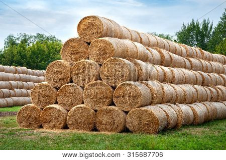 Hay Bales. Hay Bales Are Stacked In Large Stacks. Harvesting In Agriculture.