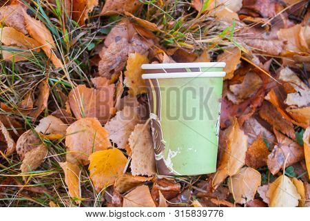 Illegal discarded coffee mug in autumn forest poster