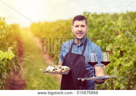 Modern Wine Maker In Vineyard Holding Samples Of Red Wine And Different Selection Of Cheese And Sala