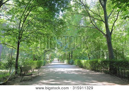 El Retiro Park Garden In Madrid Spain