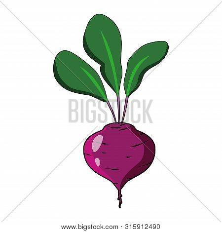 Beet With Leaves Vector Illustration. Red Beet Flat Style Logo Icon