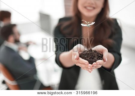 female environmentalist showing fresh sprout