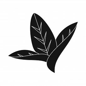 Vector Illustration Of Leaf And Leaves Logo. Set Of Leaf And Botanical Vector Icon For Stock.