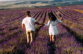 Loving Couple Holding Hands On Lavender Fields. Happy Couple On Flower Fields Rear View. Man And Wom
