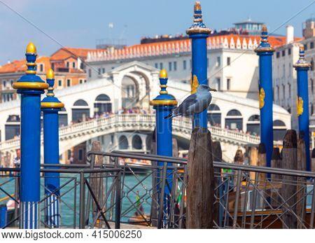 Venice. The Famous White Rialto Bridge In The Early Morning.