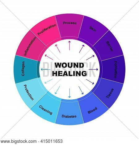 Diagram Concept With Wound Healing Text And Keywords. Eps 10 Isolated On White Background