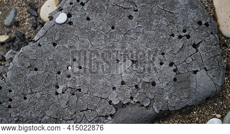 There Are Many Small And Large Holes In Heavy Dark Gray Stone That Fell From The Cliff. Unusual Gray