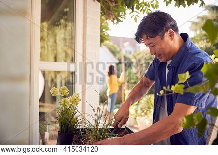 Mature Asian Man Planting Plants Into Wooden Garden Planter At Home