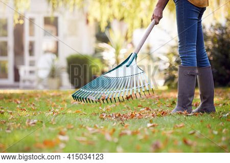 Close Up Of Woman Working In Garden At Home Raking And Tidying Leaves
