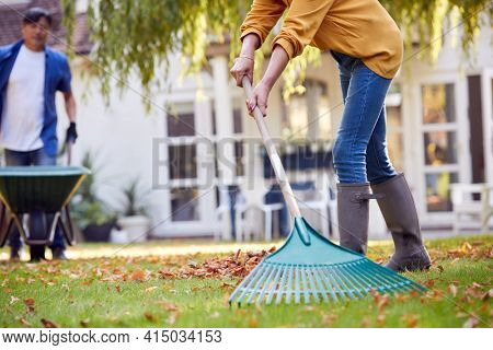 Close Up Of Mature Asian Couple Working In Garden At Home Raking And Tidying Leaves Into Barrow