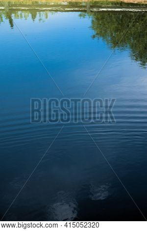 Landscape And Blue Sky Reflections On A Calm Pond.