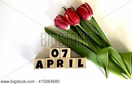 April 7.april 7 On Wooden Cubes.next To It Is A Bouquet Of Red Tulips On A White Background.calendar