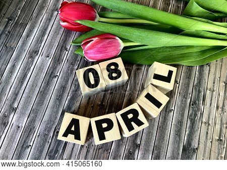 April 8 On Wooden Cubes .nearby Are Tulips On A Wooden Background .spring.calendar For April.