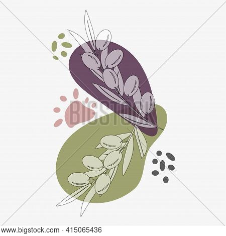 Olive Tree Branches With Ripe Olives, Abstract Background Mediterranean Landscape. Vector Illustrati
