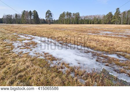 Warming With The Onset Of Spring, The Snow Is Melting In The Field.