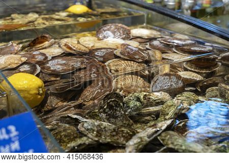 Fresh Fish At Seafood Market, Traditional Fish In Market. Fresh Sea Fish In On Showcase Of Seafood