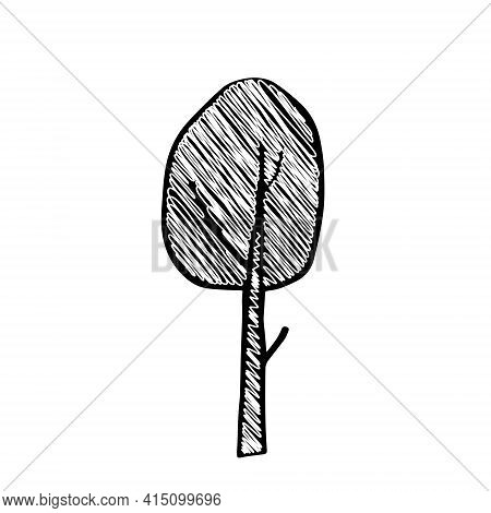 A Black Outline Hand Drawing Vector Illustration Of A Deciduous Birch Tree With Snow In Winter Isola