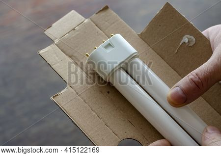 A Hand Takes A New Compact Fluorescent Lamp Out Of The Cardboard Package. Lamp For Table Lamp. Angle